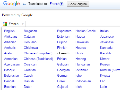 google web translator toolbar